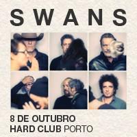 Swans – Porto